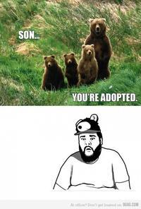Sad bear guy meme - photo#29