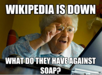Day Without Wikipedia