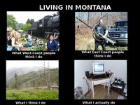 What People Think I Do / What I Really Do