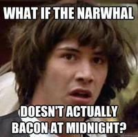 The Narwhal Bacons at Midnight
