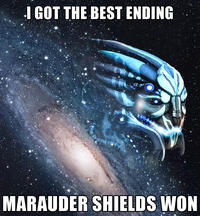Marauder Shields