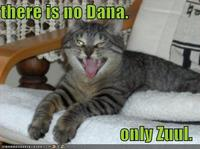 There Is No Dana, Only Zuul