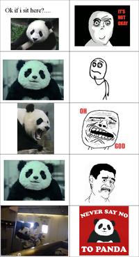 Never Say No to Panda