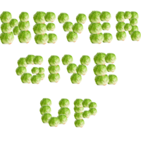 """Lettuce / It Says """"Never Give Up"""""""