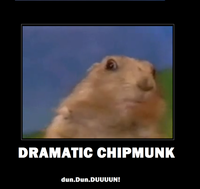 Dramatic Chipmunk / Drama Prairie Dog