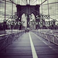 "Lettuce / It Says ""Never Give Up"": Image Gallery (Sorted ..."