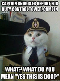 Captain Kitteh