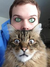 Face Swapping