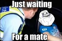 Just Waiting For A Mate