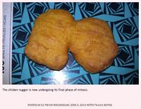 Chicken Nugger