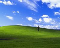Microsoft XP Bliss Wallpaper