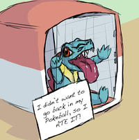 Pokemon Shaming