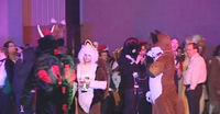 Midwest Furfest Poison Gas Attack