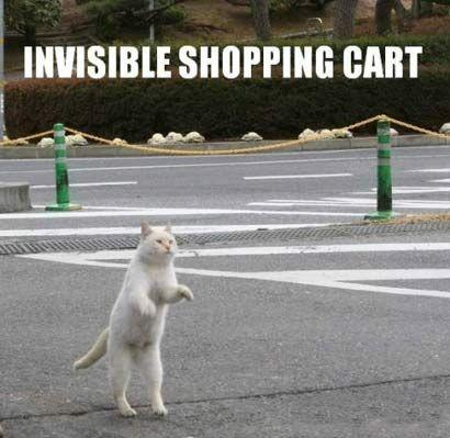 invisible_shopping_cart_410.jpg