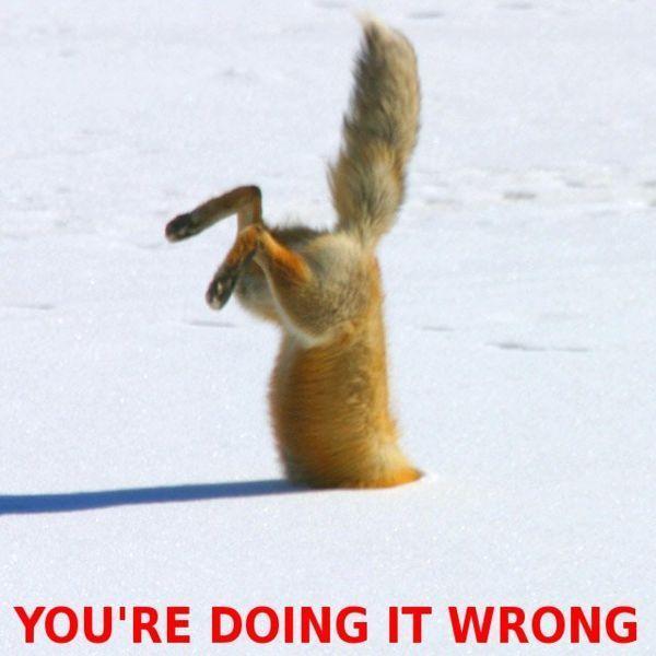 [Image: fox-doing-it-wrong.jpg]