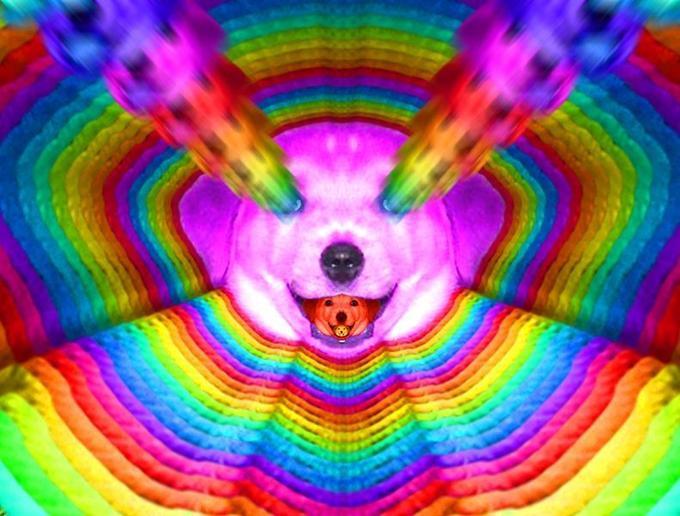 Advice_Dog_-_Final_Form.2009-04-06.15-04-12.jpg