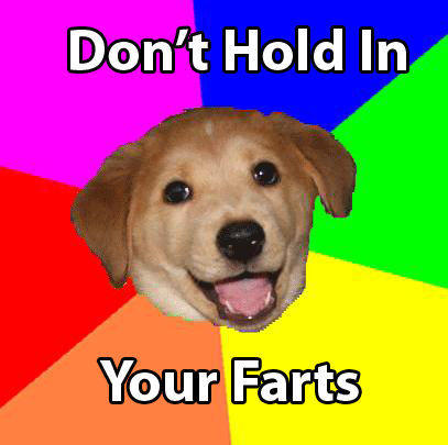AdviceDogFarts.jpg