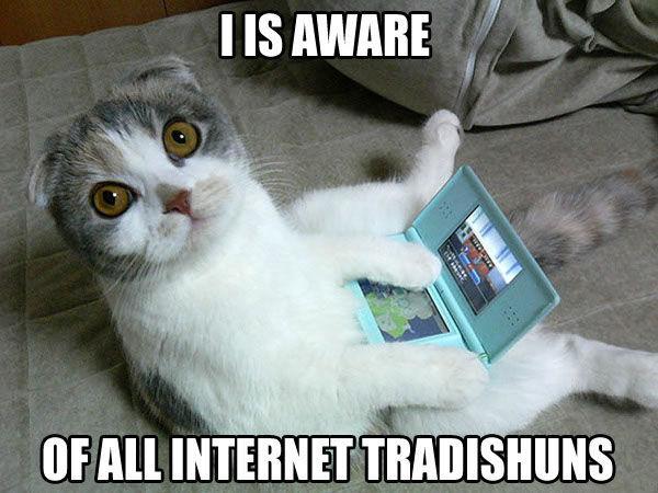 traditionalcat.jpg