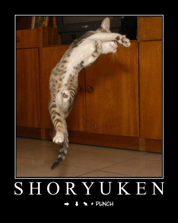 shoryuken.jpg