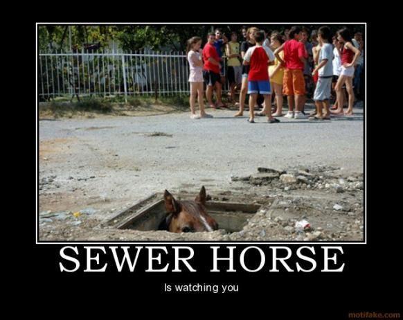 sewer-horse.jpg