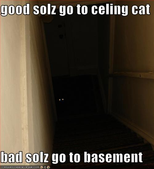 basement_cat.jpg
