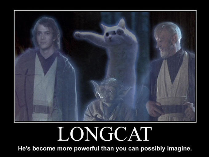 longcat.jpg