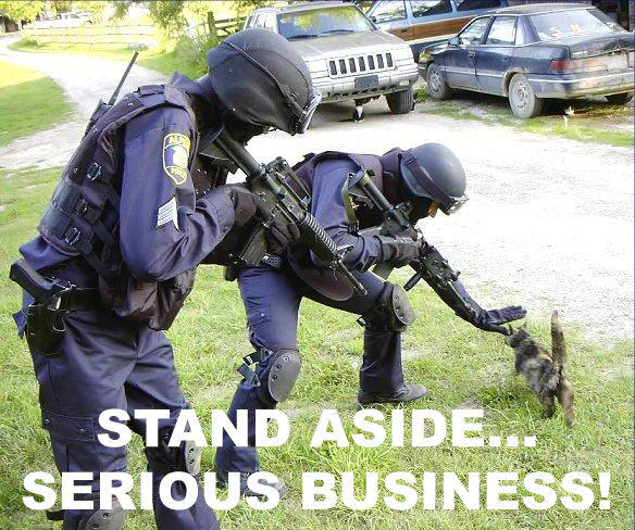 serious-business-police.jpg