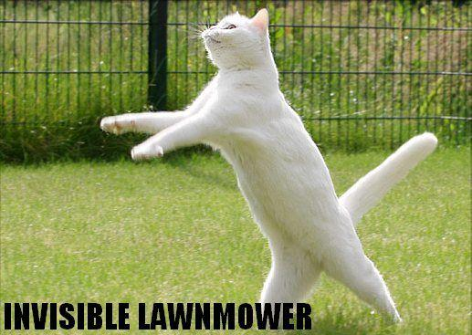 Invisible-mower.jpg