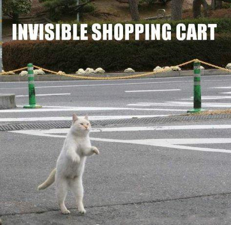 Invisible-shopping-cart.jpg