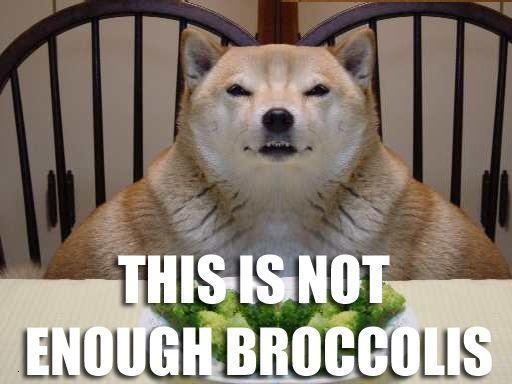Broccolisated image 11265] broccoli dog know your meme