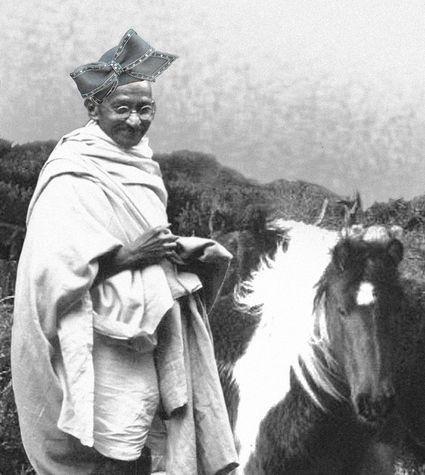 ghandi-ganders-a-gallop-10631-1232558749-4.jpg