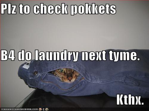 funny-pictures-cat-suggests-you-check-your-pockets-next-time.jpg