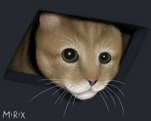 Ceiling_cat_by_Mirix.png