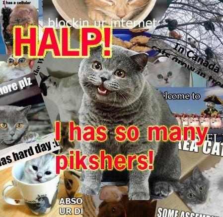 Halp-i-has-pikshers.jpg