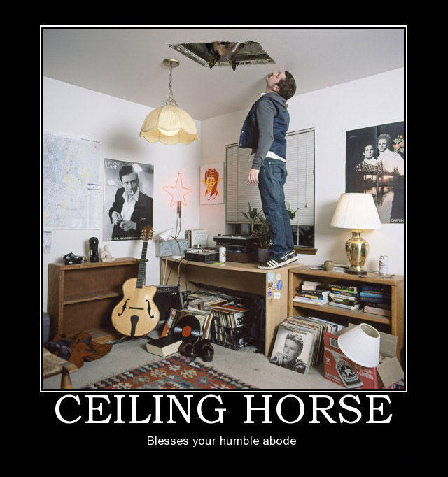 ceiling-horse-demotivational-poster-1253053413.jpg