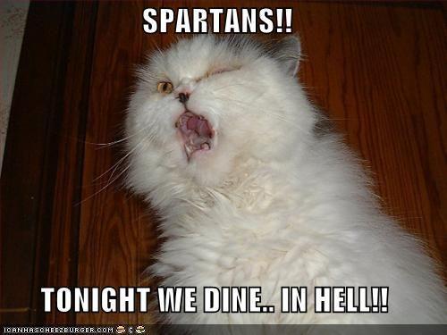 sparta_cat.jpg
