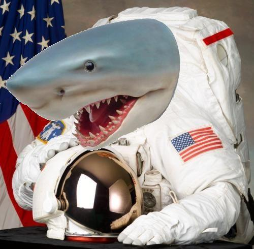 shark_naut.JPG