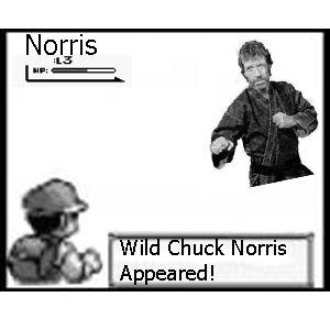 chuck_norris_pokemon.jpg