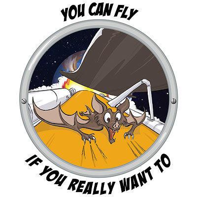 spacebat.jpg
