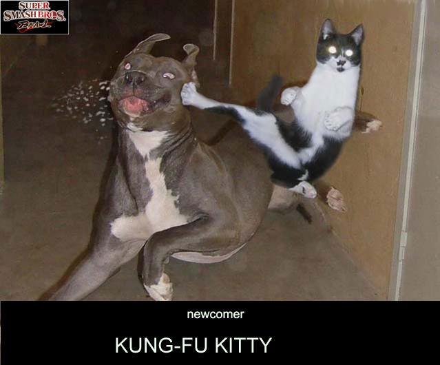 karatekitty1jv.jpg