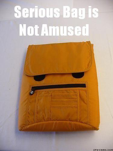 serious_bag_is_not_amused.jpg