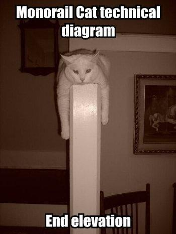 monorail-cat-technical-diagram.jpg