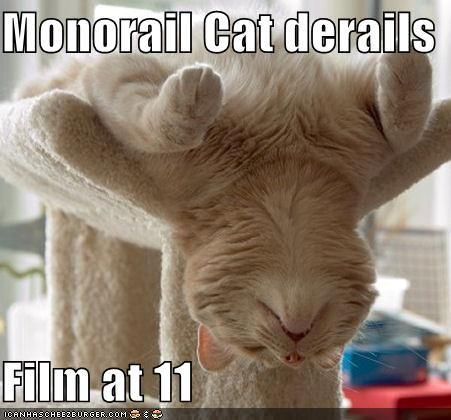 funny-pictures-monorail-cat-derails.jpg