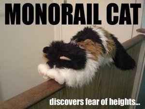 LOOLcats__Monorail_cat_by_Gaz66D.jpg