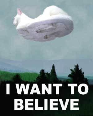 hovercat-i-want-to-believe.jpg