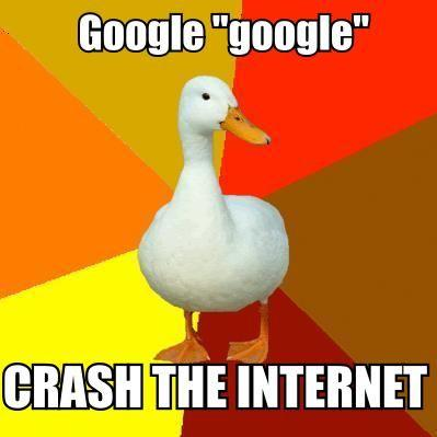 googleduck.jpg