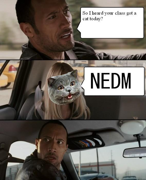 NEDMRockDriving.jpg