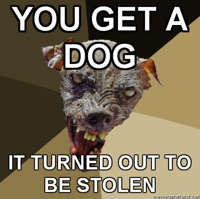 Ugly-Dog-YOU-GET-A-DOG-IT-TURNED-OUT-TO-BE-STOLEN.jpg