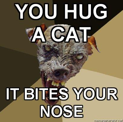 Ugly-Dog-YOU-HUG-A-CAT-IT-BITES-YOUR-NOSE.jpg