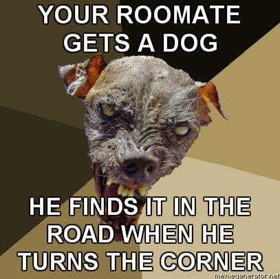 Ugly-Dog-YOUR-ROOMATE-GETS-A-DOG-HE-FINDS-IT-IN-THE-ROAD-WHEN-HE-TURNS-THE-CORNER.jpg